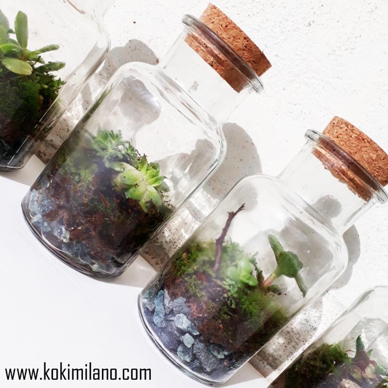 Bomboniere-Terrarium-(Succulens-terrarium)-adatto-per-bomboniere,-regalo-con-personalizzazioni-e--diverse-succulenti.-Mossarium